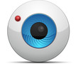 Web Cam button
