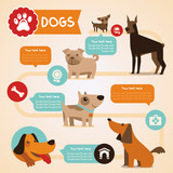 Fototapety Vector set of infographics design elements - dogs