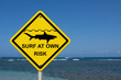 Use caution when surfing because sharks are present