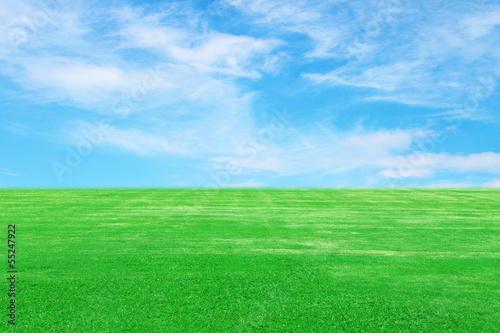 Fototapeten,gras,himmel,feld,hintergrund