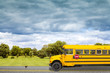 School Bus on american country road in the morning - 55248723