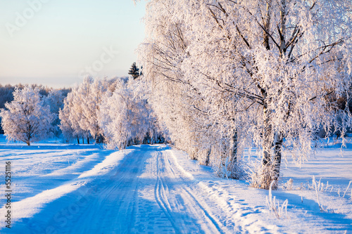 canvas print picture Small country road in winter