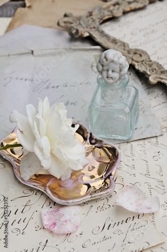 White rose © ischoenrock