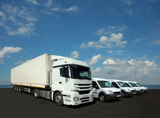 Vehicle fleet for cargo and delivery