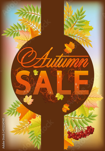 Autumn sale banner, vector illustration