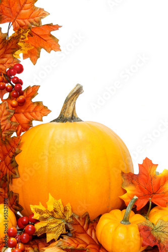 Vertical autumn border of pumpkins with red leaves