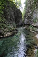 gorges de Vintgar, Slovénie
