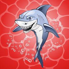 Cartoon shark over red water background