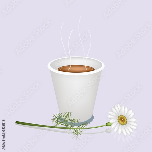 A Hot Coffee in Disposable Cup and White Daisy