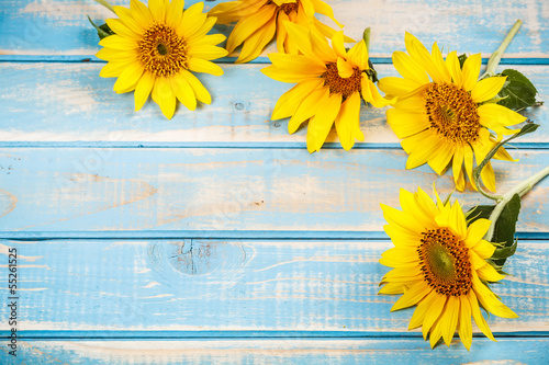 Foto op Canvas Zonnebloem Frame with sunflowers