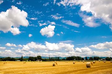 Spätsommer in der Pfalz: Stoppelfeld mit Strohballen