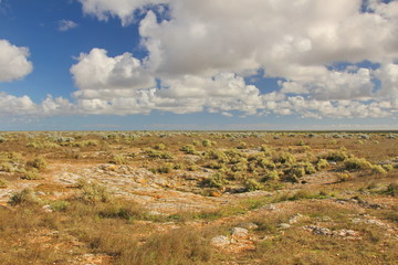 Australian outback on the Nullarbor