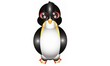 Cute Emperor Penguin Cartoon