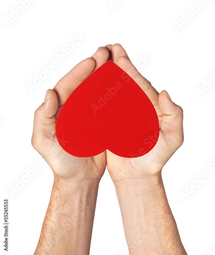red heart in man hands isolated on white