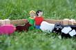 Holzfiguren Bauer und Bäuerin auf Feld mit Tieren