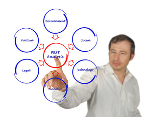 Diagram of PEST analysis