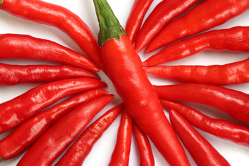 colorful hot chillies  isolated on white background
