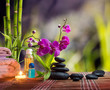 composition bamboo-purple orchid-black stones in garden