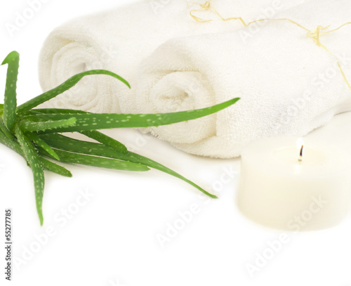 Spa composition with two towels and aloe plant