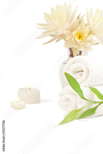 Spa composition with bamboo plant and waterlilies
