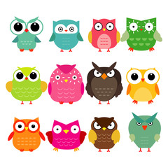 Vector owls set