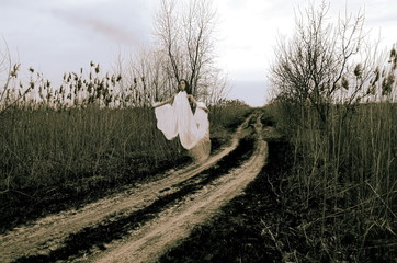 The Ghost flies along the road