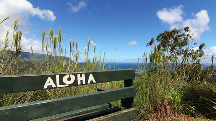 Aloha Bench Hawaii