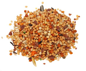 pile seeds and fruits for birds. complete food for budgies