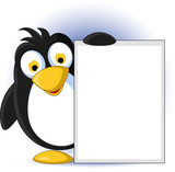 cute babay penguin cartoon holding blank sign