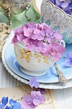 Hortensien in antiker Tasse