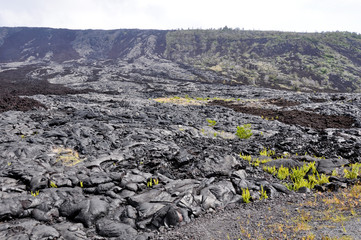 Holei Pali,  Hawaii Volcanoes National Park (USA)