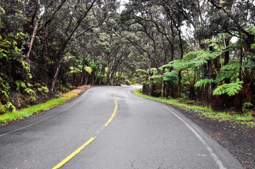 Chain of Craters Road, Hawaii Volcanoes National Park (USA)