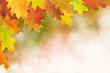 Herbst 35