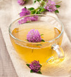 herbal tea leaf clover