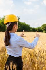 Female architect inside a wheat field