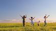 девушки дети  прыгают, кружатся на лугу
