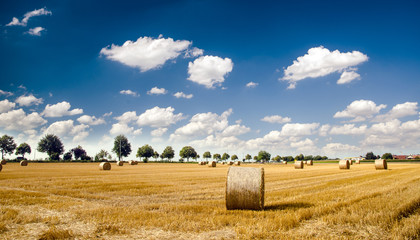 Erntezeit in der Pfalz: Stoppelfeld mit Strohballen