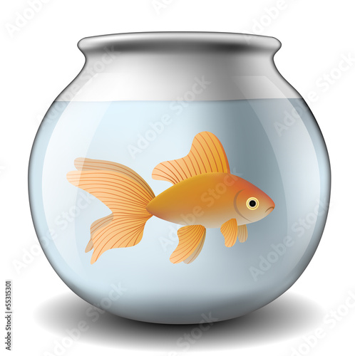 Fishbowl with goldfish