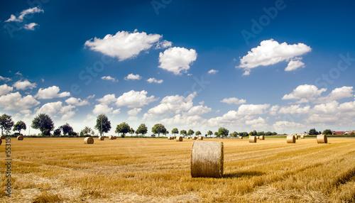 Fototapeten,ernten,feld,agricultural,ballen