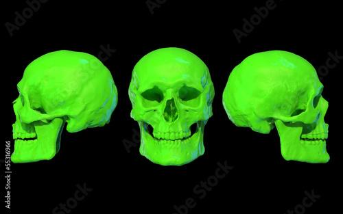 Schädel 3D neon grün