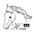 hand drawn horse head on white as symbol of club