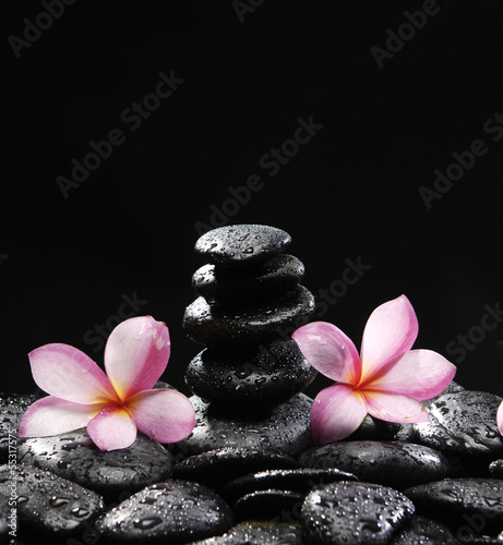frangipani and stacked black pebbles