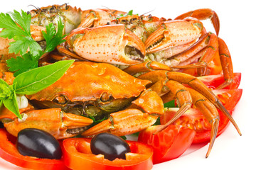 fresh crab with vegetable and greens isolated on white