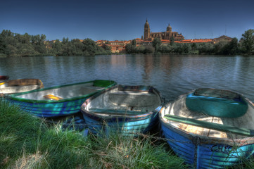 View of Salamanca from the river