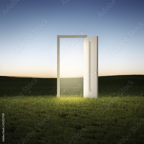 illuminated  door in a green field