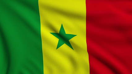 Flag of Senegal looping
