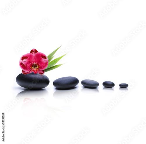 Fototapeten,massage,kieselstein,medizin,wellness