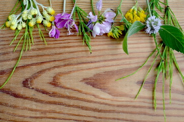 Zioła i kwiaty na desce