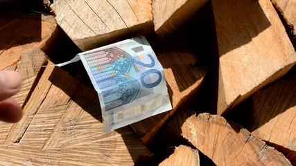 Mit Brennholz Geld sparen