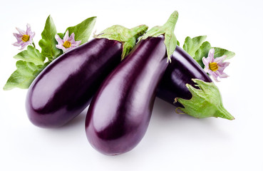 aubergine with leaves and flowers isolated on white
